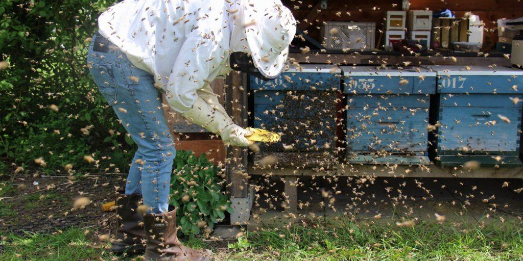 2021 State Fair of Texas – Black Jar/Polished Jar Honey