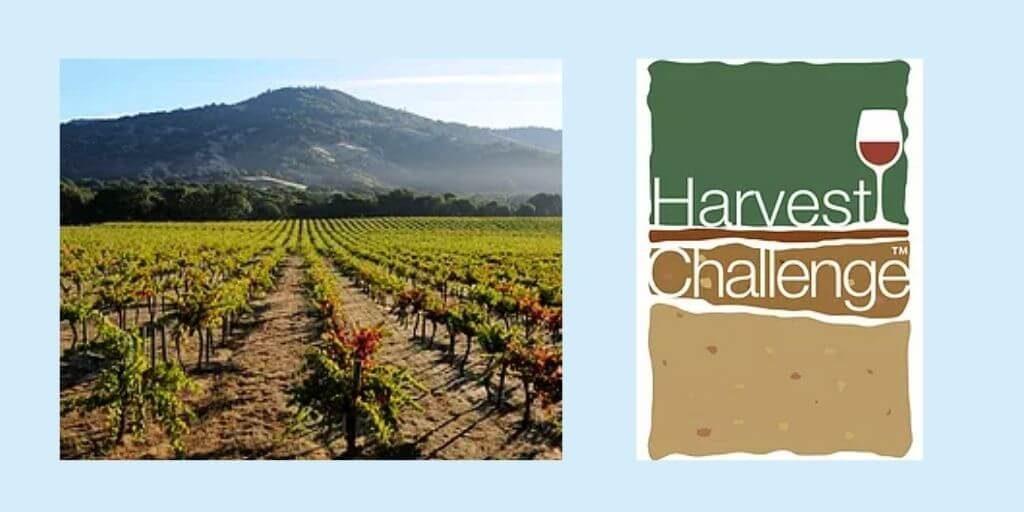 2021 Harvest Terroir Challenge